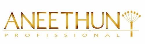 Logo da Aneethun